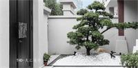 现代庭院其它实景图