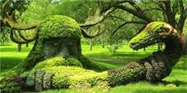 这花园太逆天了,美得惊世骇俗!