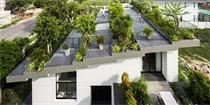 越南芽庄的屋顶花园,满满的绿意