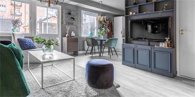 瑞典2室灰色调1层公寓